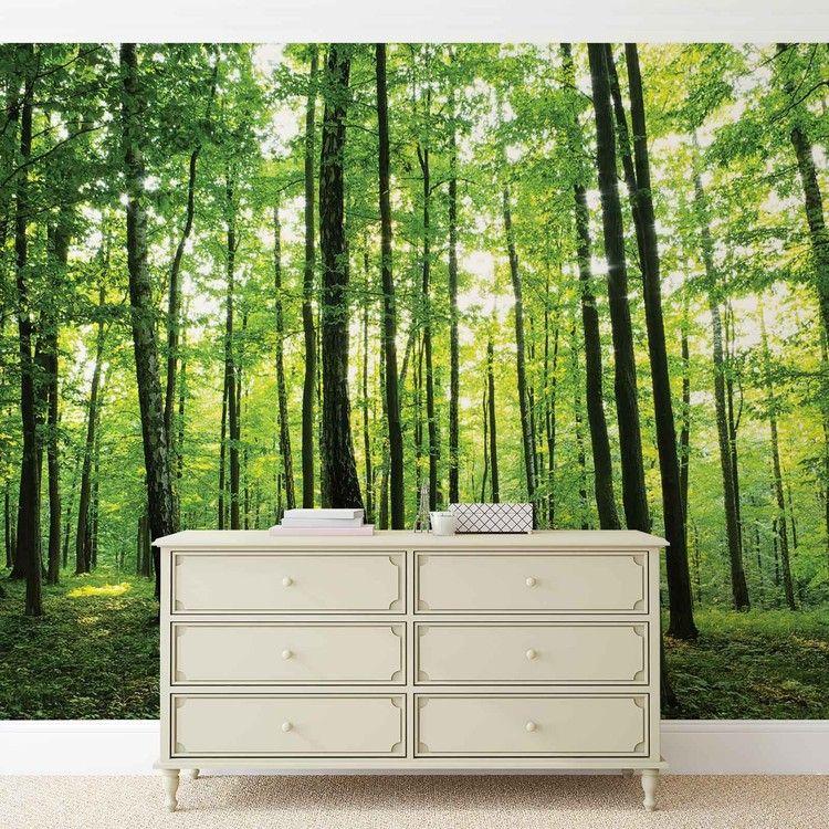 Forest trees green nature fototapet tapet på europosters dk