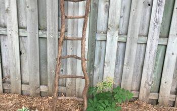 Mr.Garden Square Tomato Trellis Plant Ladder Eggplant Ladder