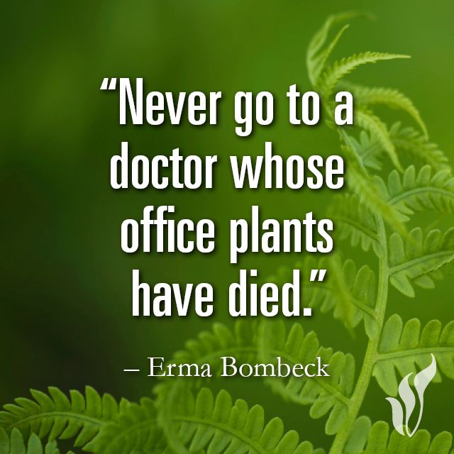 The Spirit Of The Landscaping Profession Engledow Group Gardening Quotes Funny Garden Quotes Gardening Humor