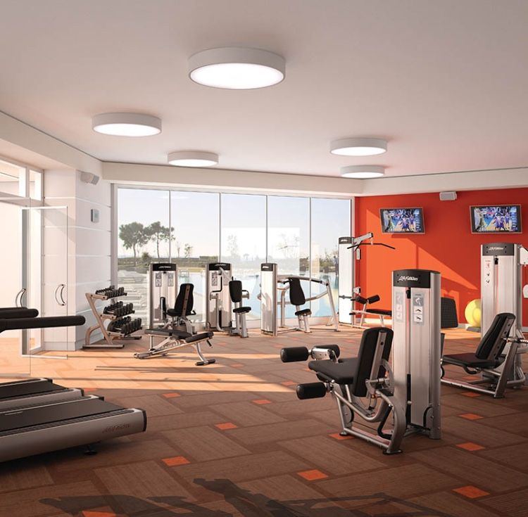 Home Gym Design Ideas: Pin By Margaret Skwierczynski On Red Room