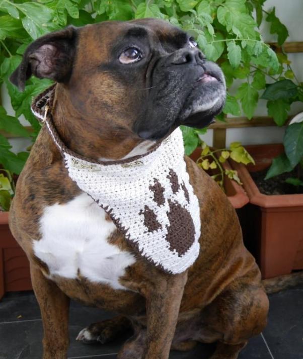 Hundehalstuch unisize Dog Style No.6   Hundehalstuch, Pfoten und ...