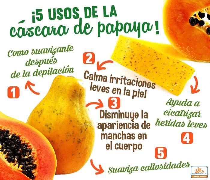 Para que sirven las semillas de papaya licuadas
