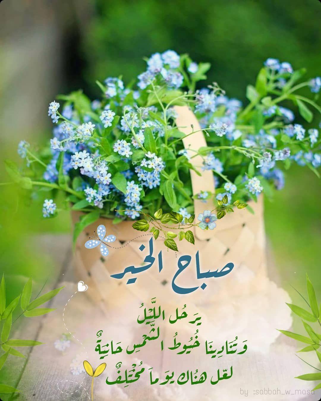 صبح و مساء On Instagram ير ح ل الل ي ل و ت ن اد ين ا خ ي وط الش م Good Morning Beautiful Good Morning Messages Good Morning My Love