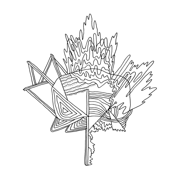 Canadian Maple Leaf Colouring Page With Abstract Drawing By Donald Lee