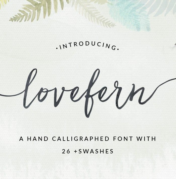 Lovefern a modern calligraphy swashes font