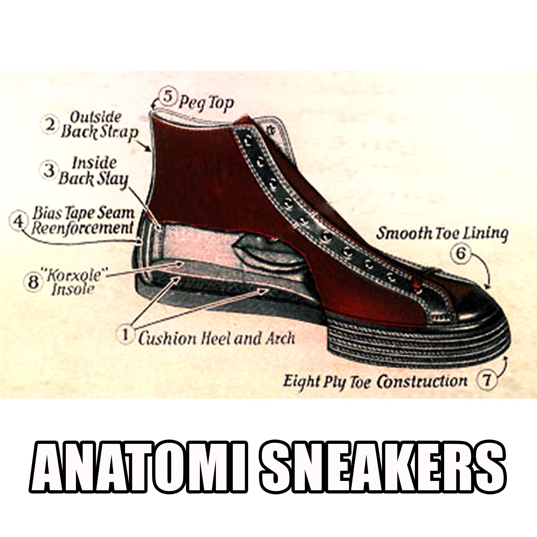 Ardiles Sneakers Lovers Tubuh Kita Punya Anatomi Ternyata Sandal Casual Roberto Kesayangan Juga Lho Setiap Komponen Membuat Kaki