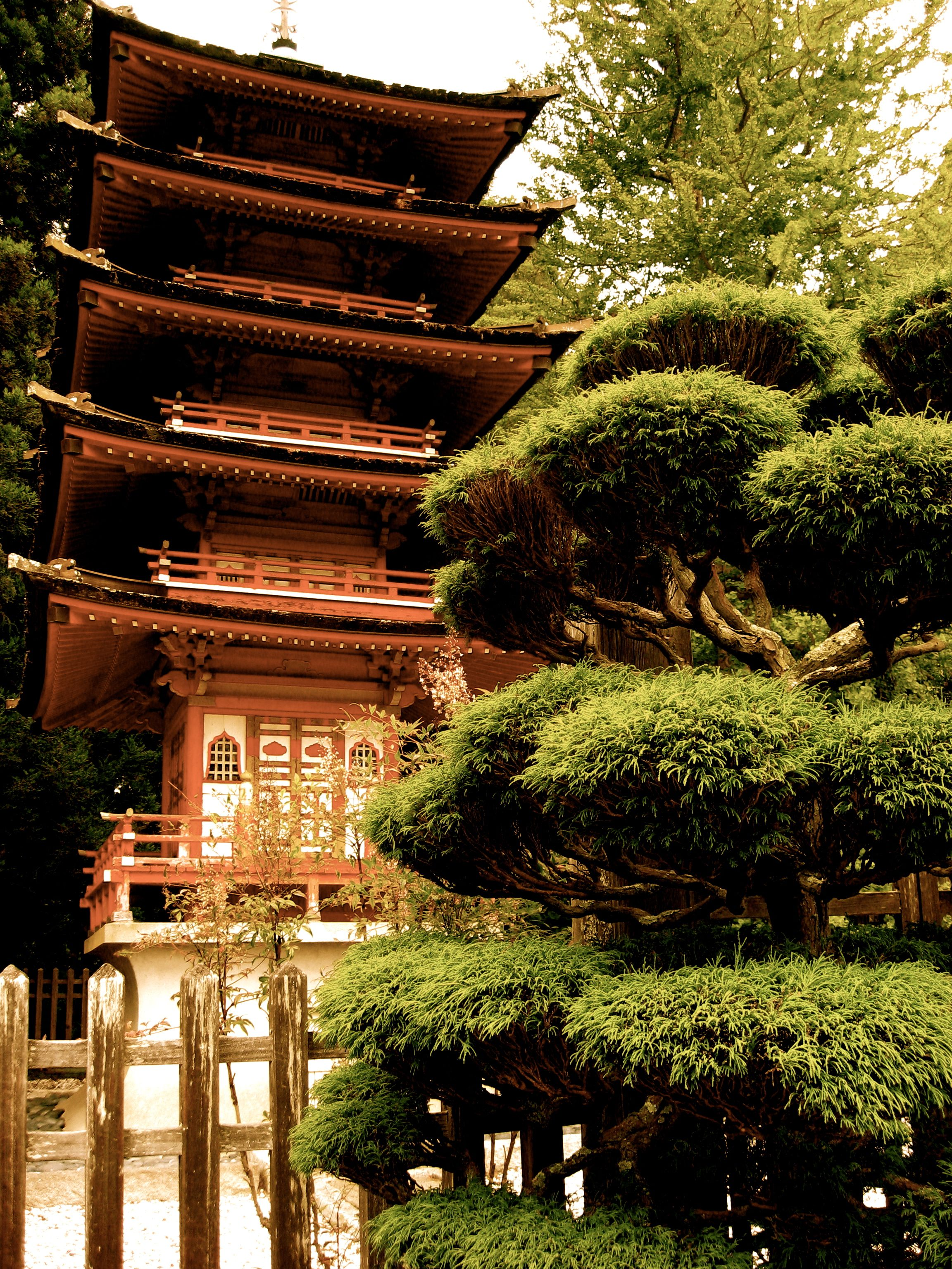 Japanese Tea Garden Tower, San Fransisco CA | ohhh the places we\'ll ...