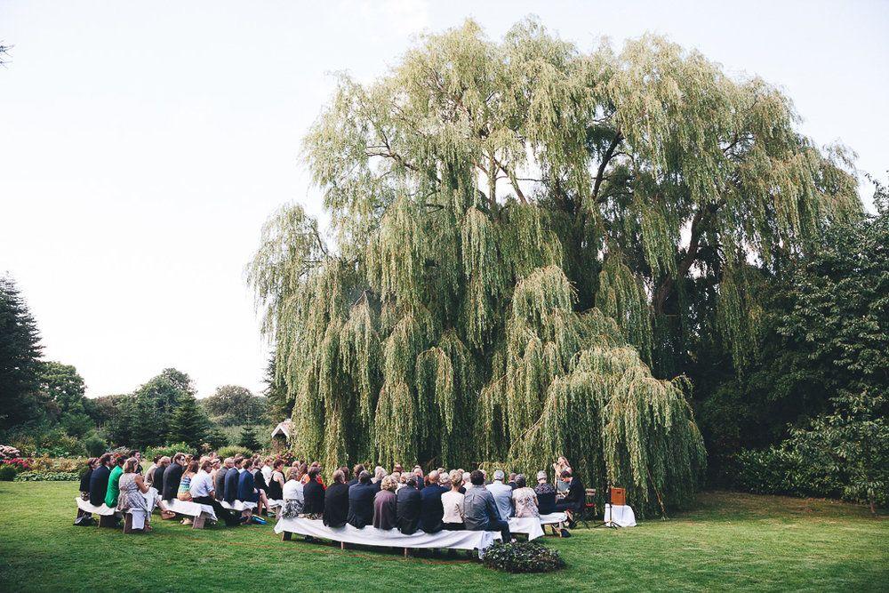 Trauung Vor Der Trauerweide Im Alten Auf C Phil Schreyer Hochzeitsfotograf Hochzeit Trauerweide