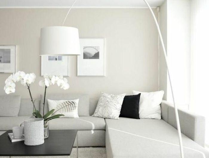 Quelle couleur pour un salon? 80 idées en photos! Decoration