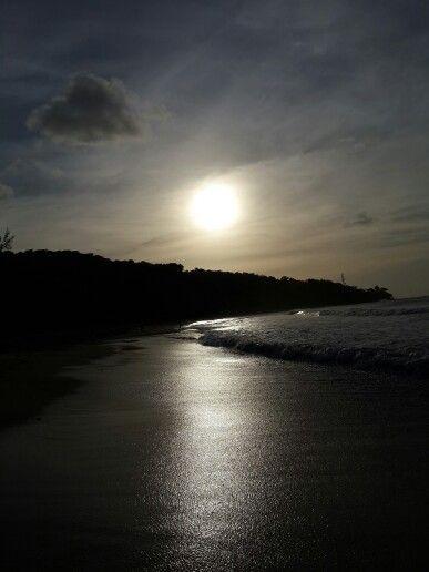 Toco trinidad 30.03.15 The wonderlust of nature!