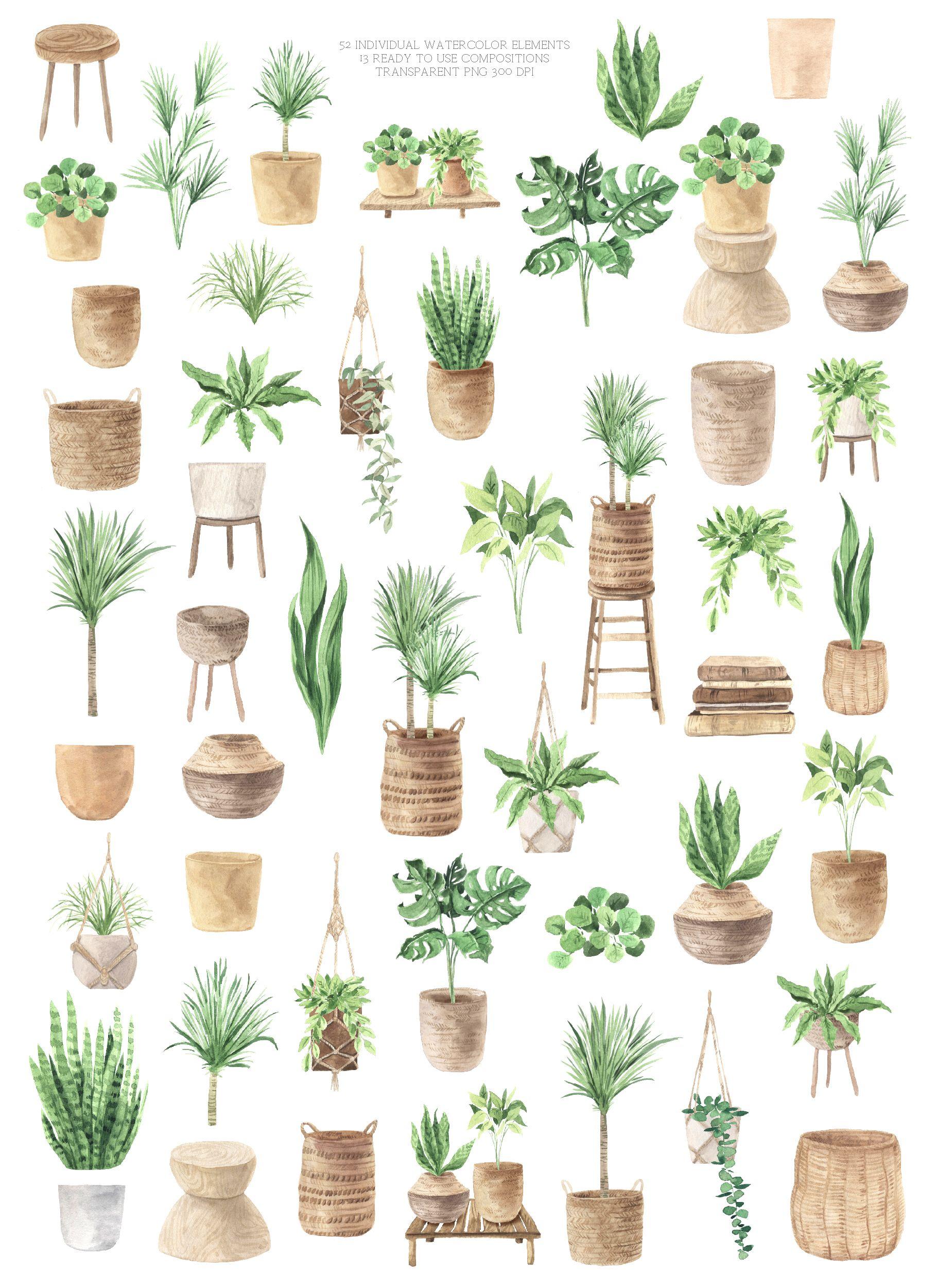 Boho Plant Home Clipart Watercolor House Potted Plant Png Etsy Watercolor Plants Plants Scene Design