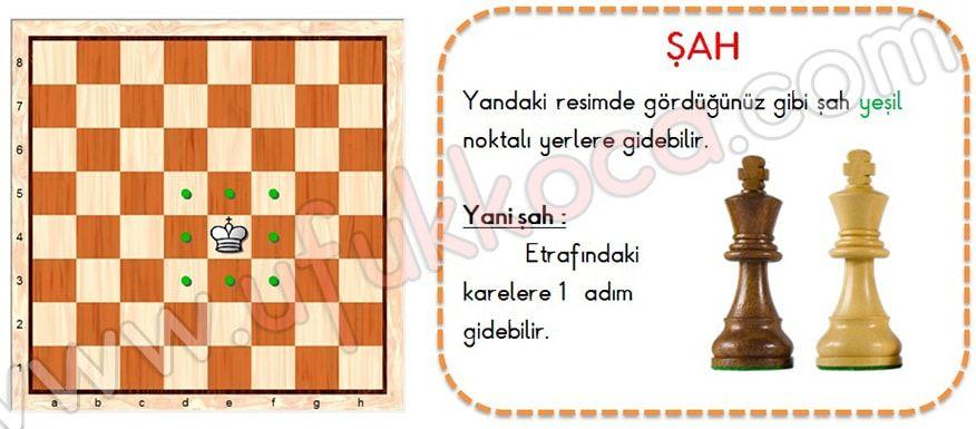 Satranç Nasıl Oynanır Art For Me Art