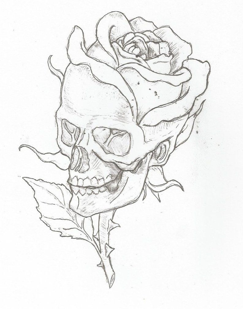 Pin By Miyazu On Skullies Skull Art Roses Drawing Art Drawings Sketches