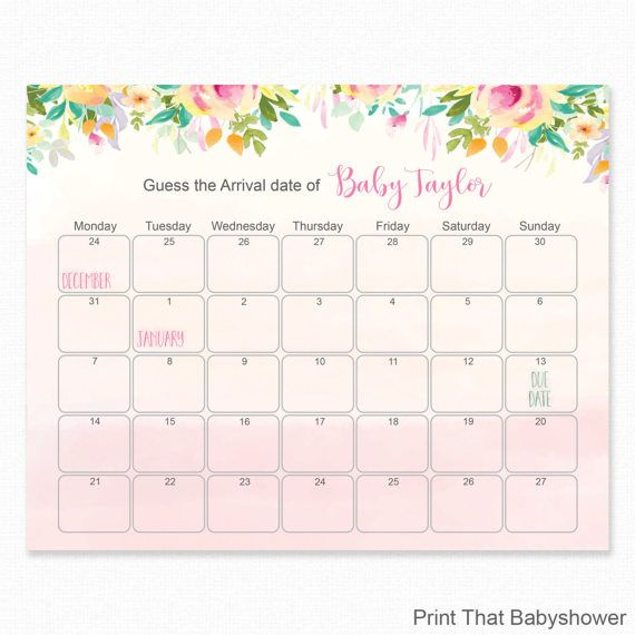Beach Themed Baby Shower Birthday Predictions PRINTABLE Baby Shower Due Date Calendar Poster Birthday Guess Pink and Navy Nautical 0047-P