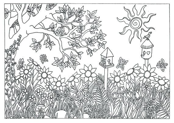 garden nature scene coloring page coloring for adults