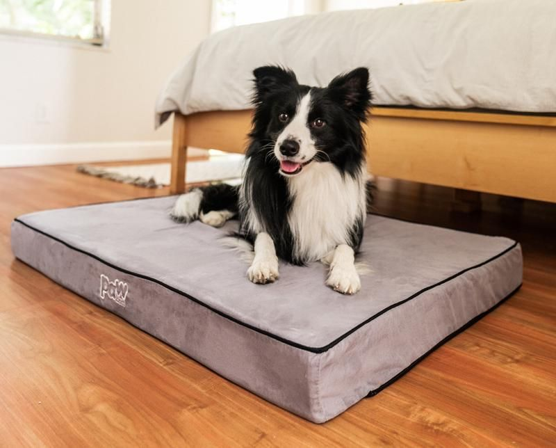 Human Grade Memory Foam Dog Beds With Easy To Remove And Machine Washable Covers Rated Best Orthoped Orthopedic Dog Bed Best Orthopedic Dog Bed Orthopedic Dog