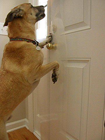 Heavy Duty Clawguard Big Dog Scratch Shield Ultimate Door Frame