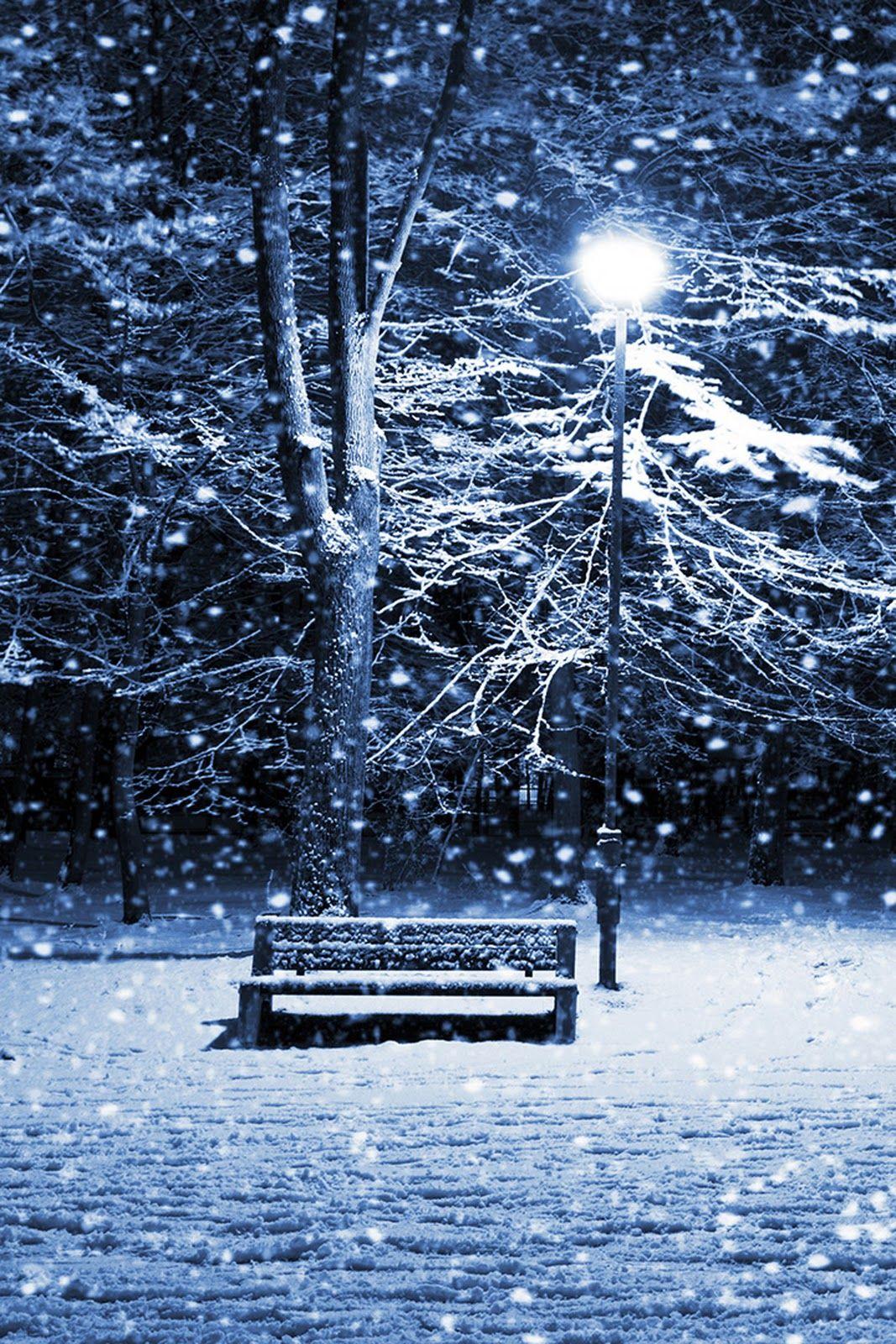 Wallpaper iphone winter - Winter Park Wallpaper