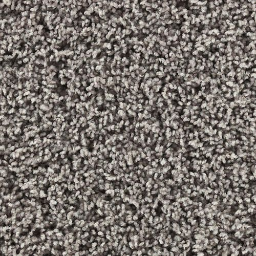 Shaw Color Tyme I Freize Carpet 12 Ft Wide Affordable Carpet Carpet Stores Carpet Remnants