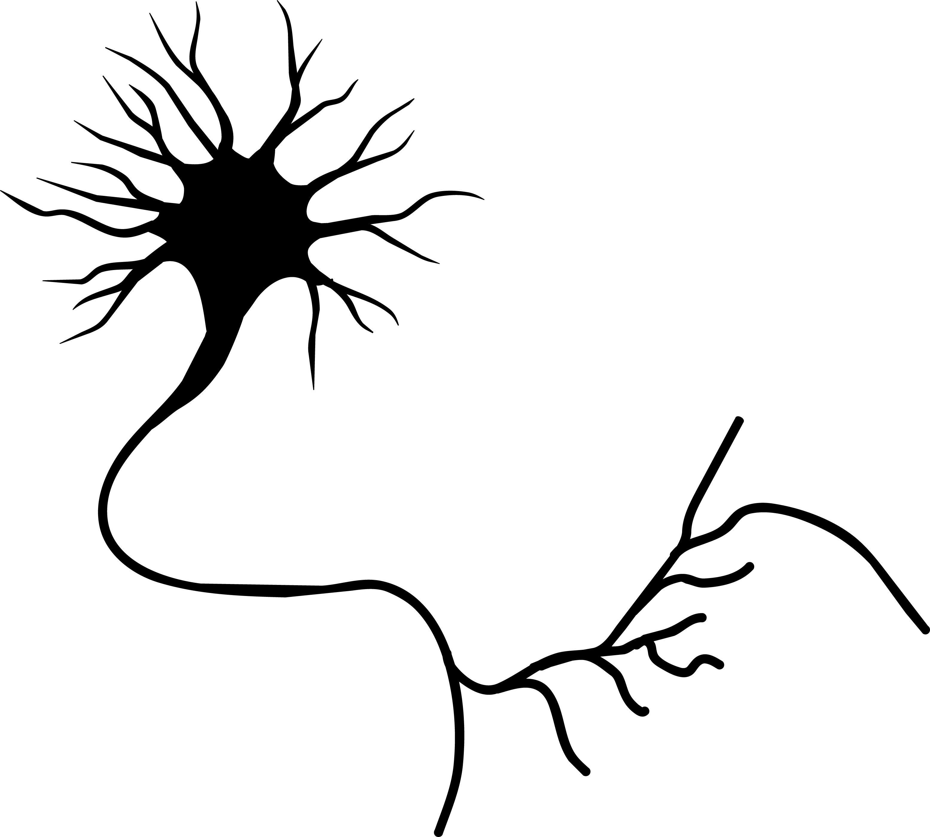 Neuron Picture ClipArt Best Science tattoos, Brain art