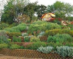 Garden Design For Slopes how to design a garden with slopes Explore Hill Landscaping Landscaping Ideas And More Gardens On A Slope