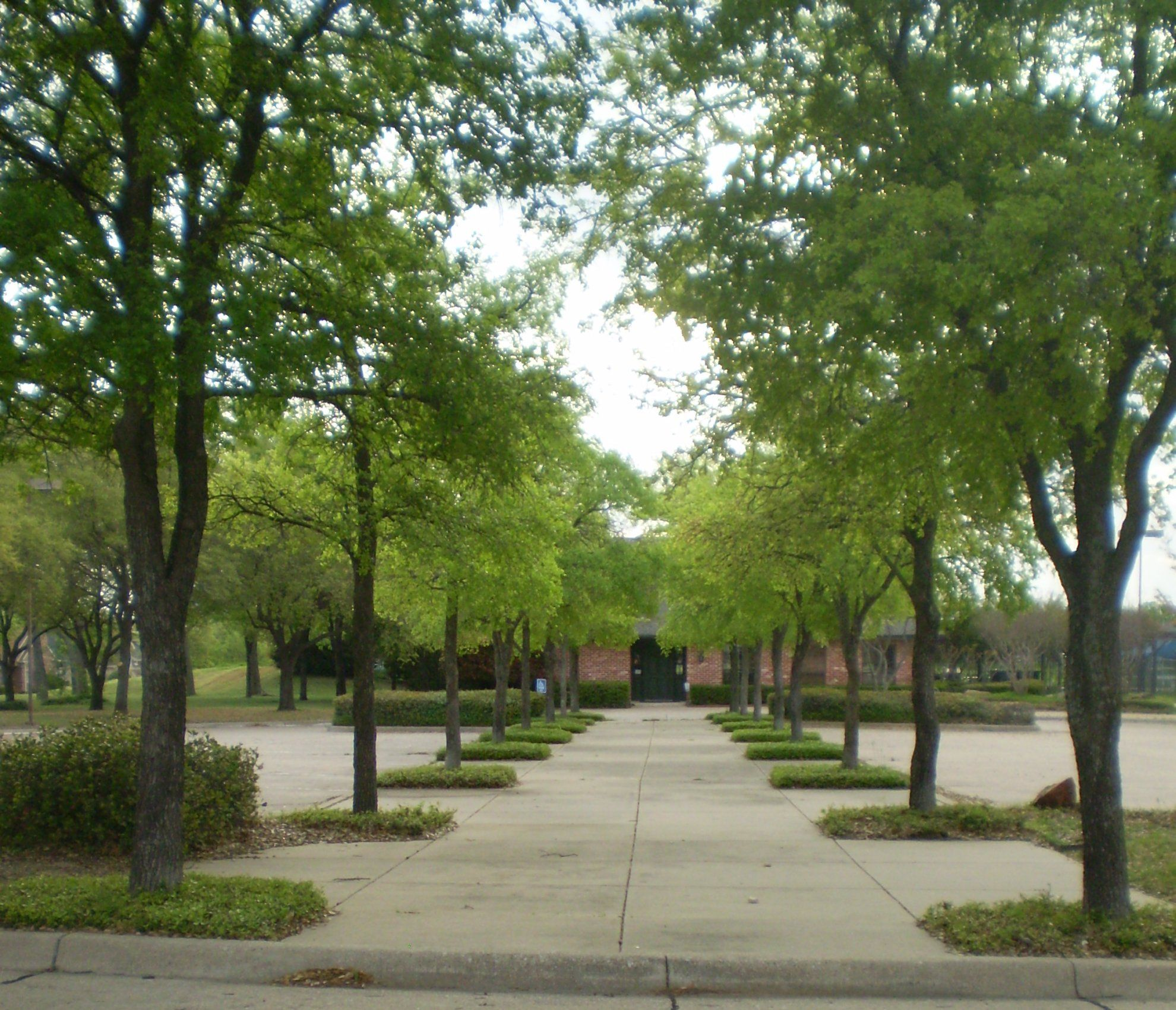 Modern commercial landscaping on commercial landscape for Commercial landscape design