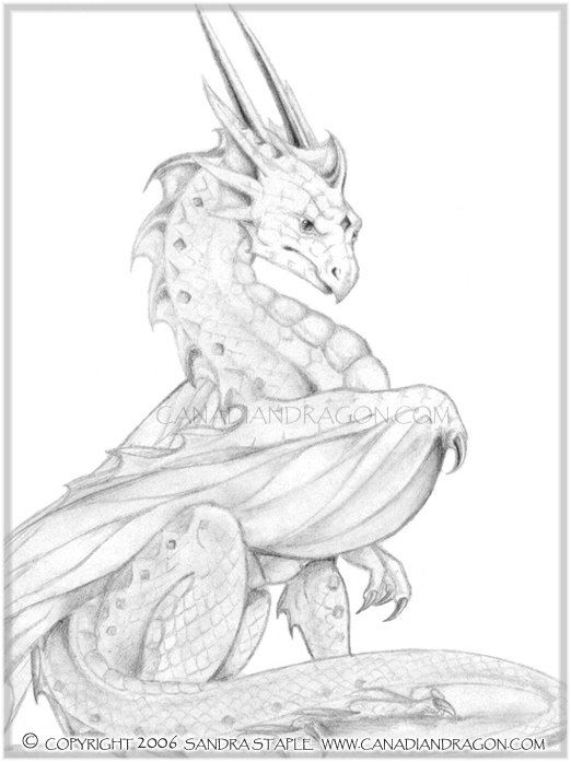 Dragon drawings pride dragon character graphite pencil drawing 2002
