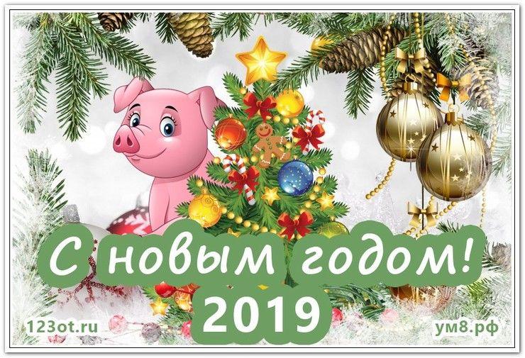 Картинки в стихах с наступающим новым годом 2019 год свиньи, позитивчик