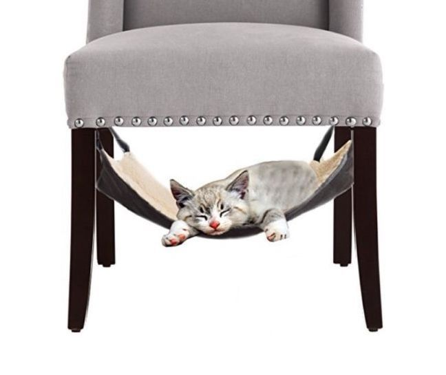 cat hammock bed   city kitty   hanging soft pet bed use with crate cage or chair for kitten ferret puppy or small pet by le fur   mink grey chair hammock   plush cat and spaces  rh   pinterest
