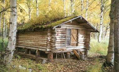 Pin by RT Floyd on Log Cabins & Small homes in 2019 | Secluded cabin
