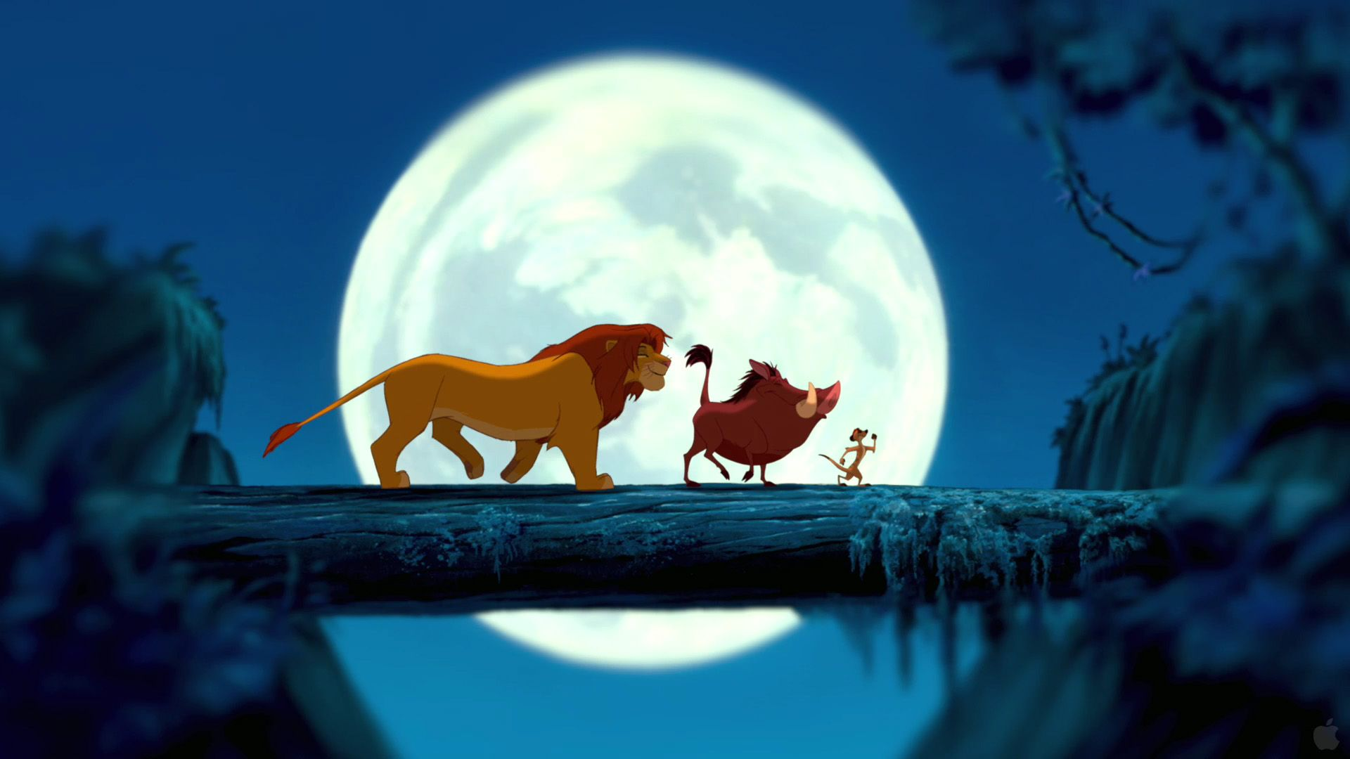 82 The Lion King HD Wallpapers Backgrounds Wallpaper