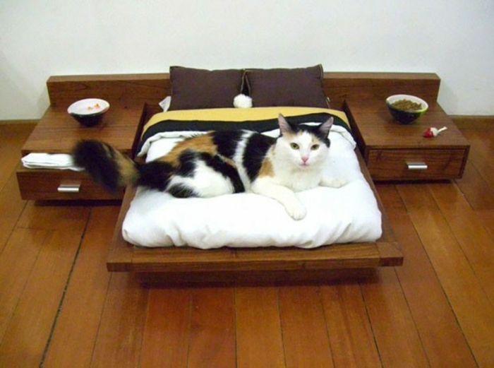 Originelle Katzenmobel Schenken Sie Ihrer Katze Mehr Spass Und Ruhe Modern Cat Cat Bed Modern Cat Bed