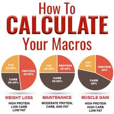 Photo of Alles, was Sie über Makros wissen müssen – Diät Blog