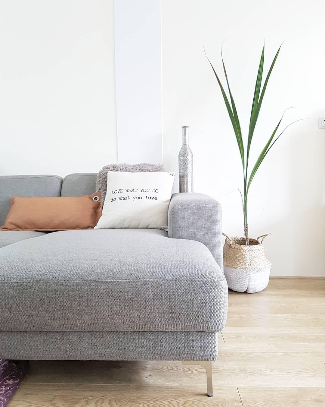 Sofa Milano (3-Sitzer) | Wohnzimmer designs, Taubenblau und ...