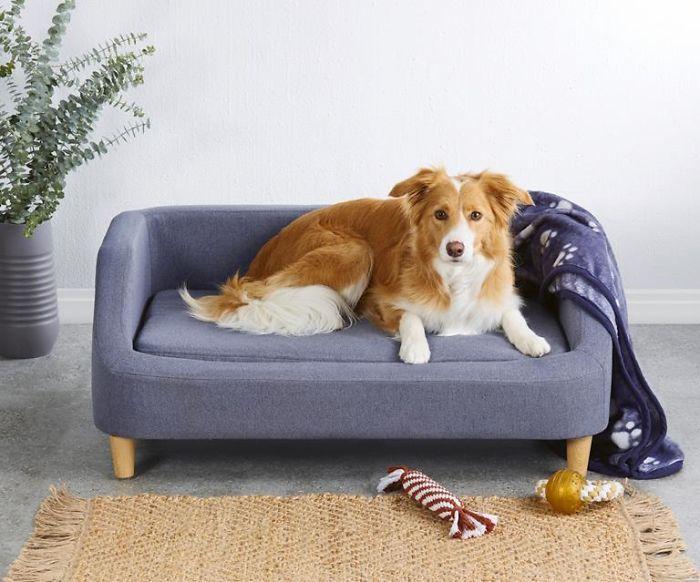 Aldi Released A Line Of Adorable Tiny Sofas For Dogs Em 2020 Cao Panda Caes Panda