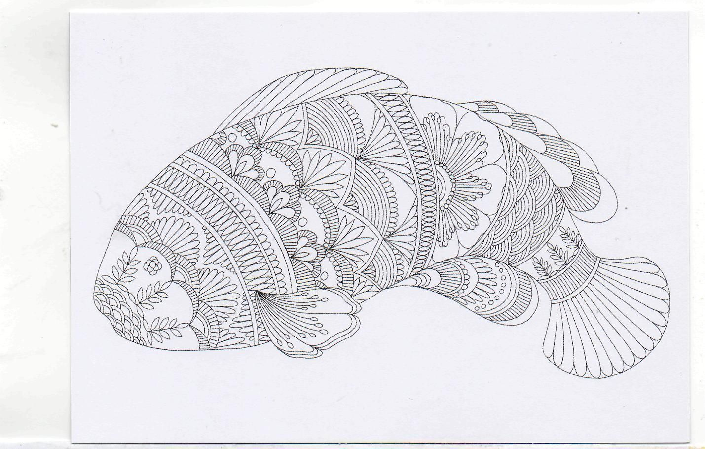 Postcard Millie Marottas Colouring In Card Large Fish New