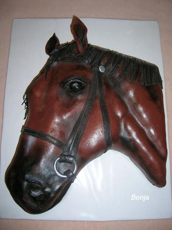 My sister would love this horse cake.