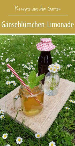 Gänseblümchen-Limonade   Rezepte aus dem Garten - grüneliebe
