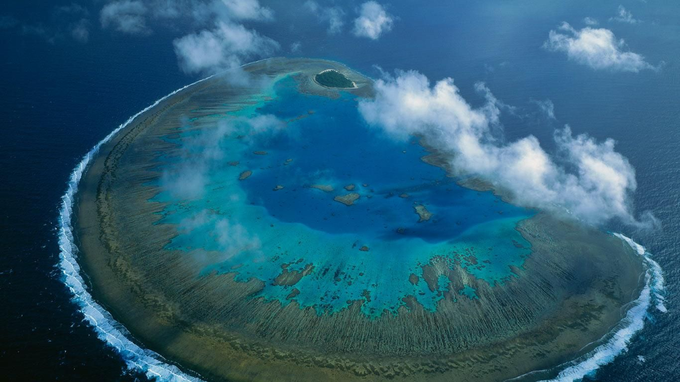 Bing Images Lady Musgrave Island Great barrier reef