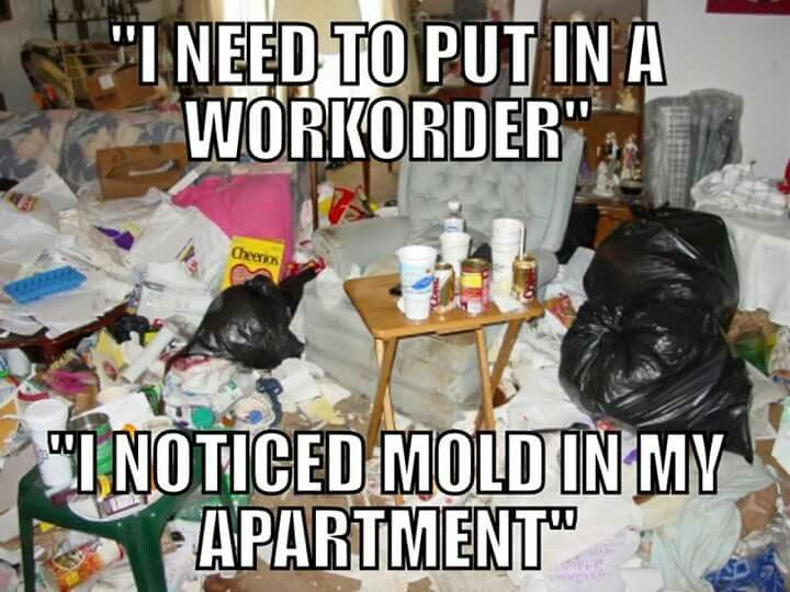 Property Manager Reality  Reality Check    Property