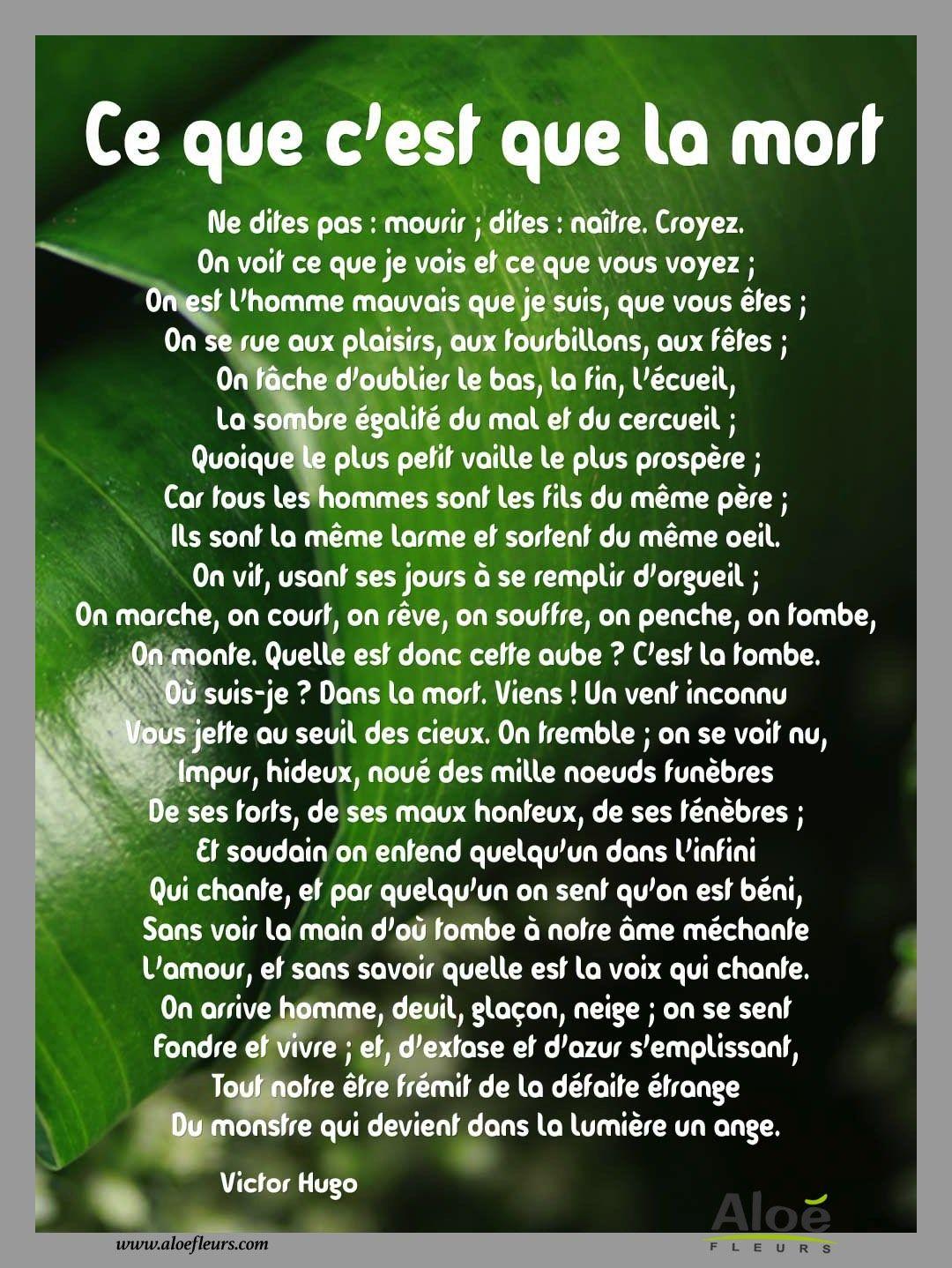 Bien-aimé Ce Que Cest Que La Mort Victor Hugo | T2 | Pinterest | Deuil  GG22