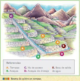 La Agricultura De Las Culturas Pre Incas Aprenda Historia