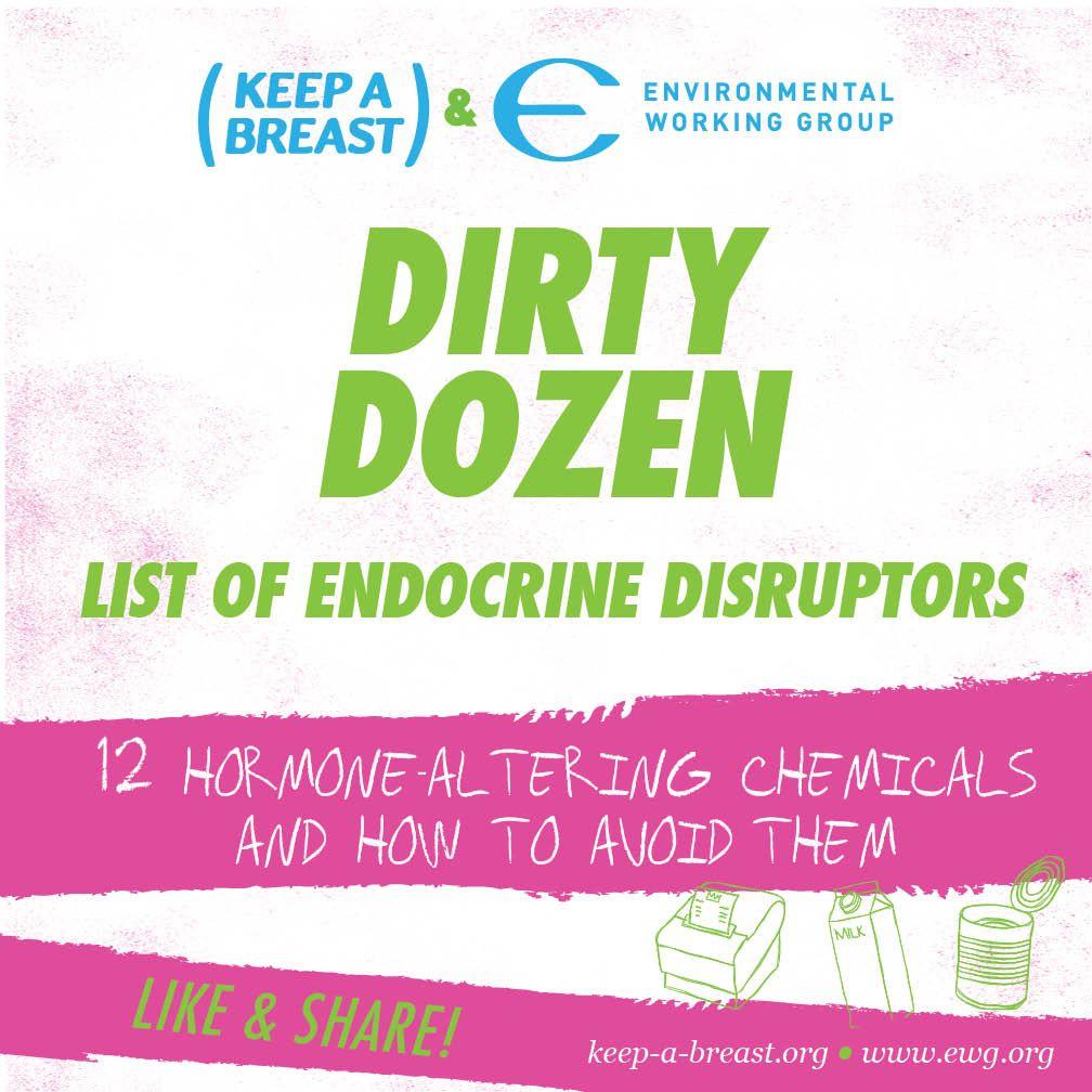 breast endocrine disruptors cancer and
