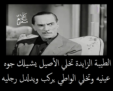 Pin By عطر الورد On كلام وله معنى امثال شعبي Fun Quotes Funny Funny Quotes Arabic Funny