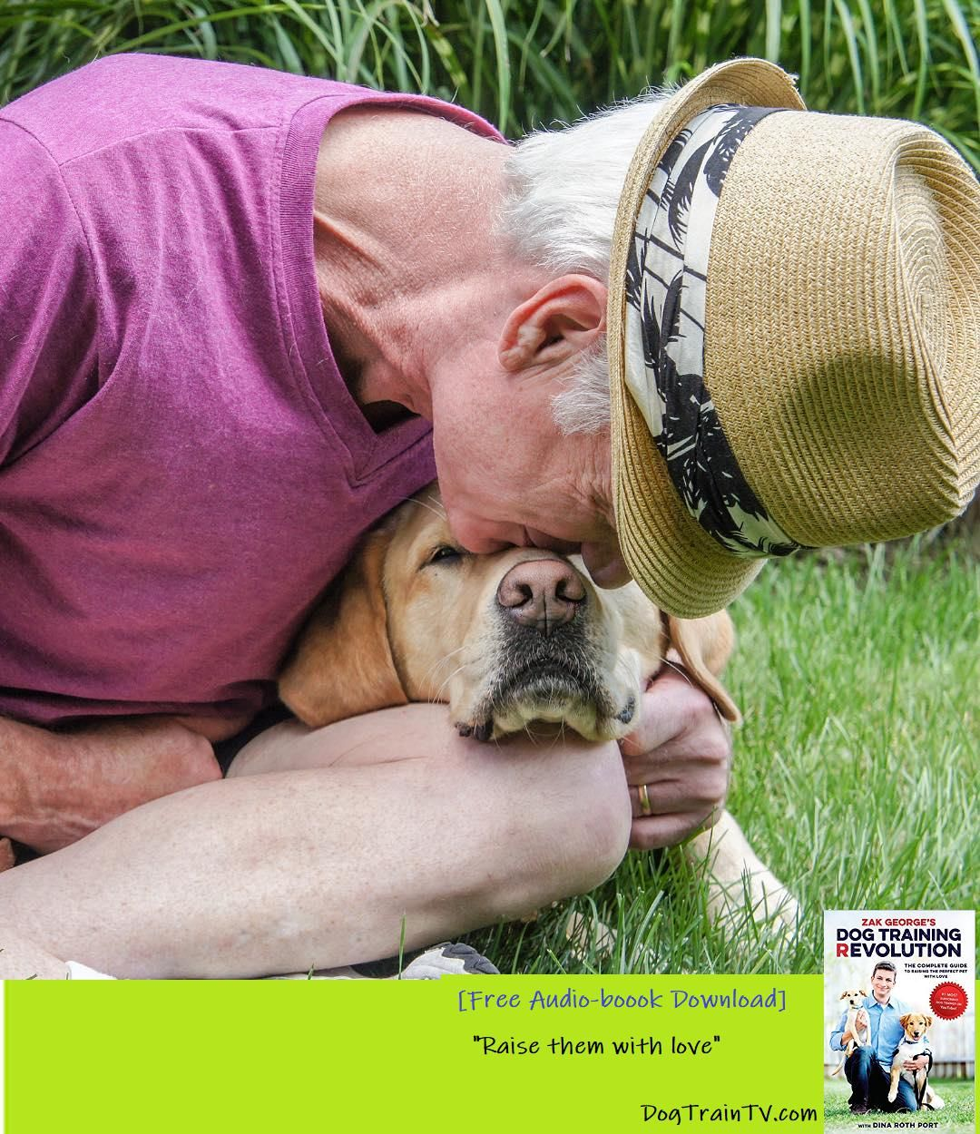Build A Better Relationship With Your Dog Guide Dogs Learn A Very