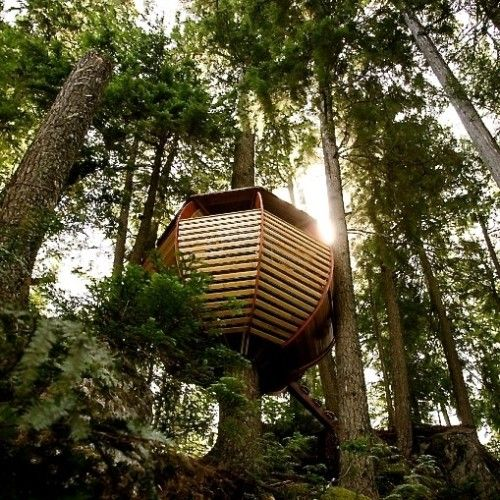 Treehouse idea also cottages cabins treehouses pinterest cool rh