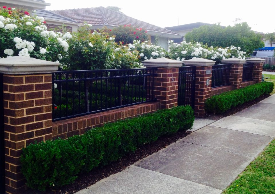 Low brick fence with pillars and box hedge boarder Bens