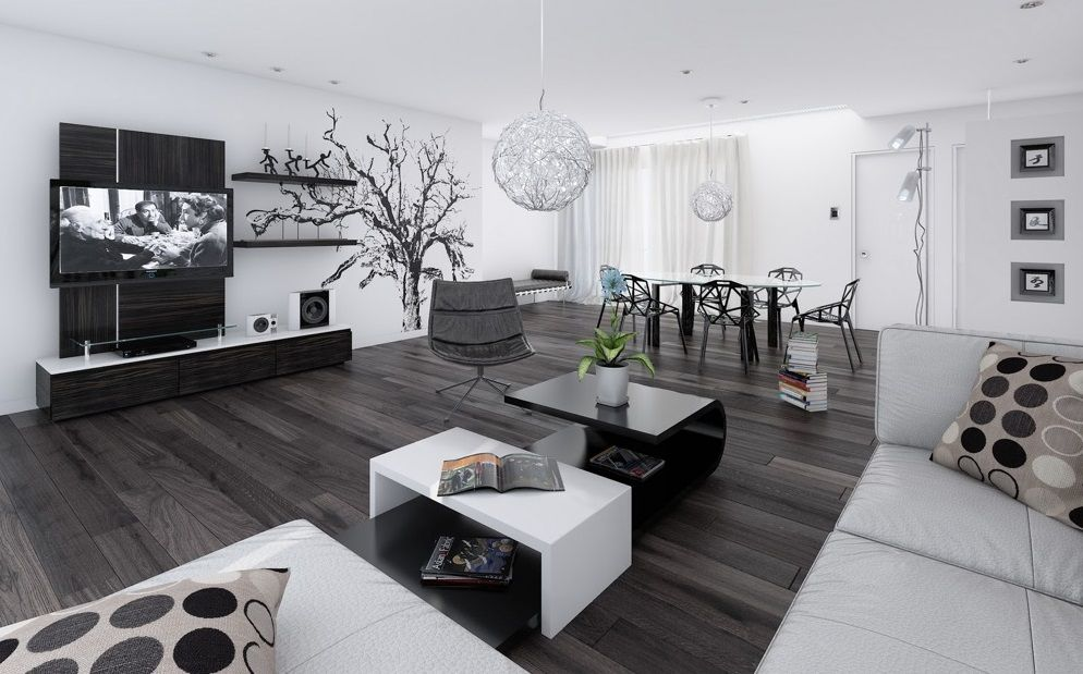 Black N White Living Room Ideas Best Living Room Red Ideas