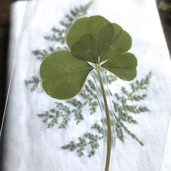 Bookmark REAL Five Leaf Clover Bookmark