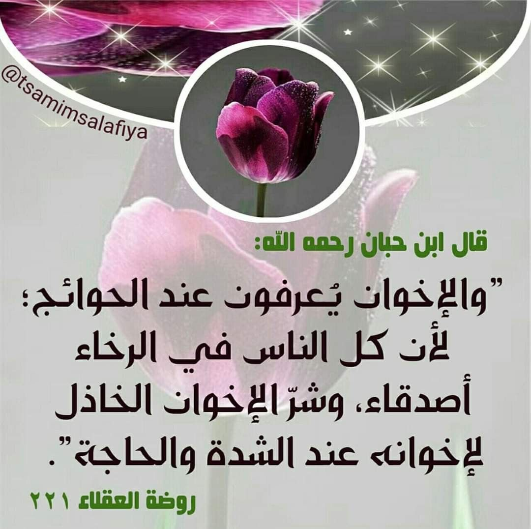 Pin By Driss Alami On درر و فوائد Words Quotes Islam